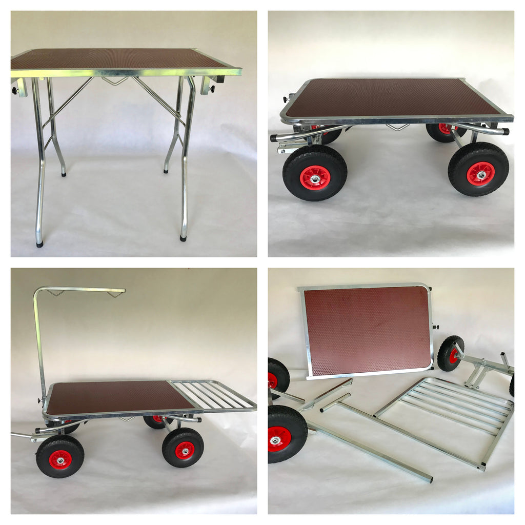 Dual Purpose Grooming Table