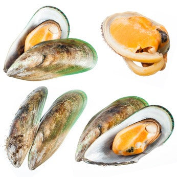 100% Pure GLYCOMEGA Greenshell Mussel Powder