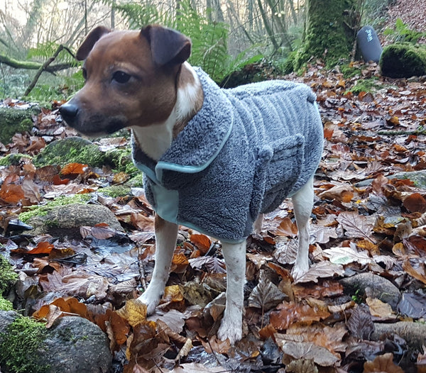 Henry Wag Microfibre Dog Drying Coats