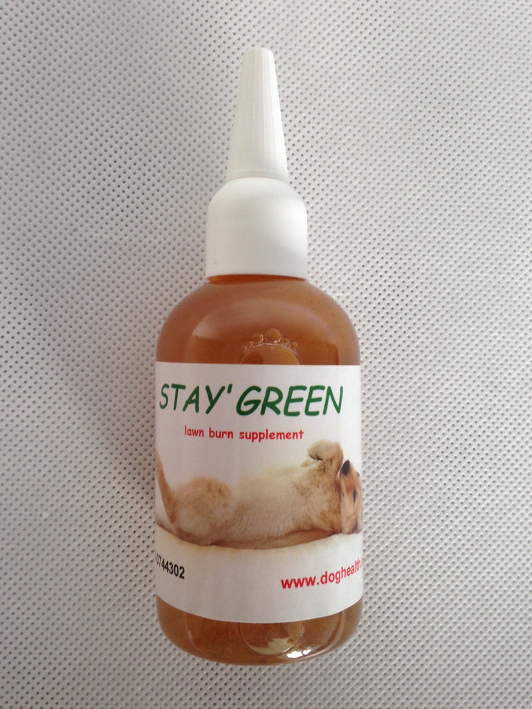 Stay Green for urine burnt grass