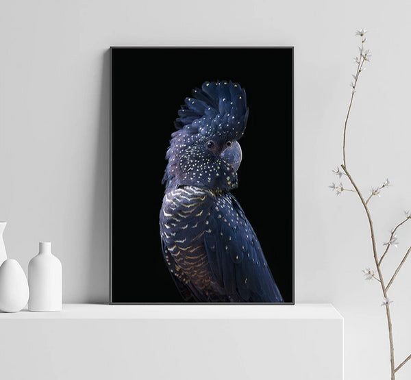Majestic Modern Cockatoo Bird Animal Canvas Wall Art