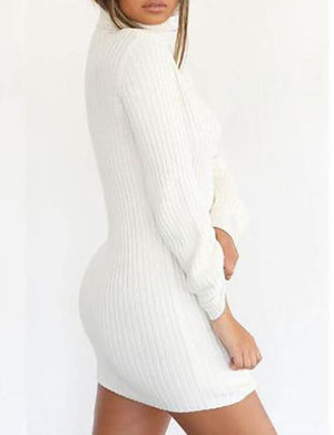 Turtle Neck Long Sleeve Knitted Bodycon Dress