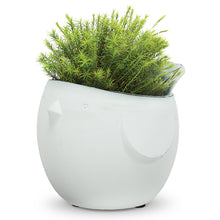 Load image into Gallery viewer, Tiki Planter