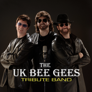 Fri 31st May - The UK Bee Gees Tribute Band