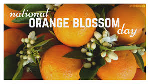 Did you know its National Orange Blossom Day, so why is that important to us