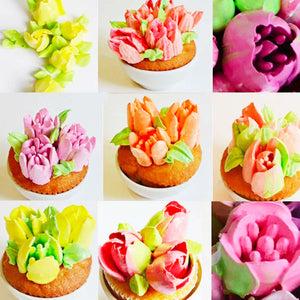 14pc Russian Tulip Icing Nozzle Set