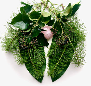 Equisetum and ivy berries clustered to look like lungs around a rose quartz heart.