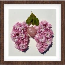 Load image into Gallery viewer, Kwanzan Cherry Blossom Print