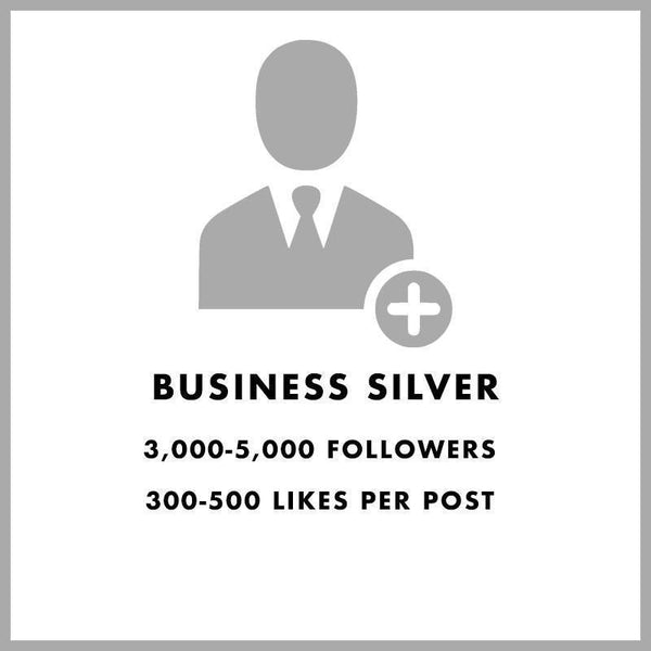 Business Silver