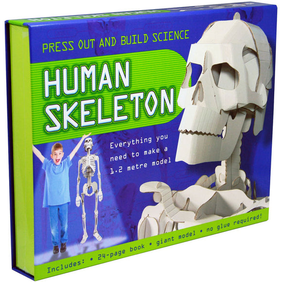 Top That Press Out and Build Science Human Skeleton