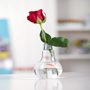 Transparent Light Bulb Flower Plant Glass Vase - HomDecors