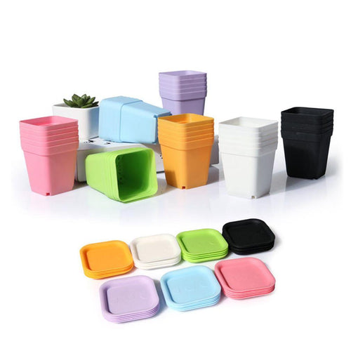 10pcs Colorful Mini Square Plastic Plant Flower Pot With Pots Trays - HomDecors