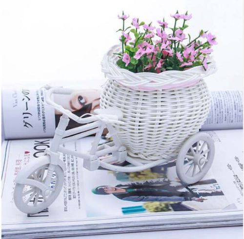 Tricycle Bike Flower Plants Basket Container (2 Types Available) - HomDecors