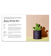 Little Book of Cacti & Succulents