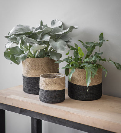 Black Jute Plant Pot Large
