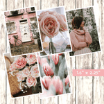 Country Blush 2019 Vol. 1, Mood Stories