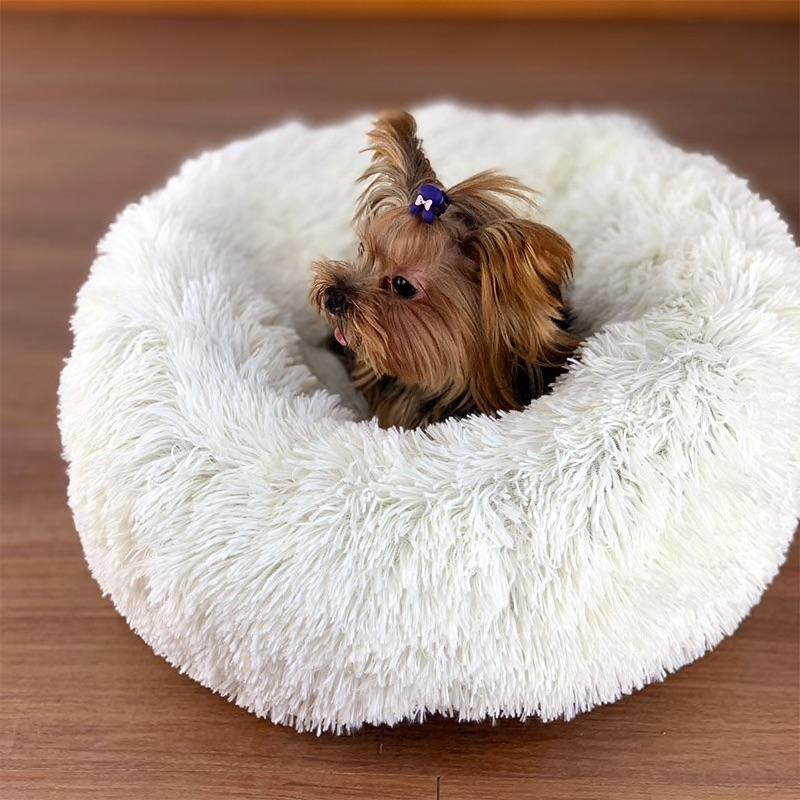 A small dog resting in The Puppy Pod Calming Dog Bed