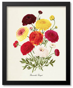 Multi-color Flower Botanical Prints
