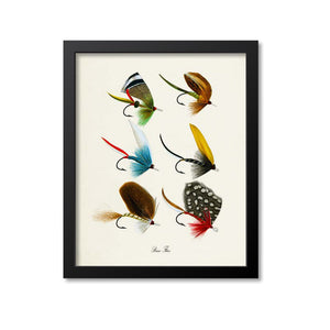 Bass Flies Art Print