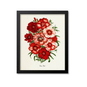 China Pink Flower Art Print