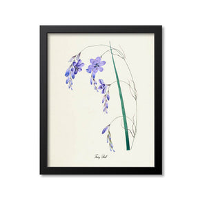 Fairy Bell Flower Art Print