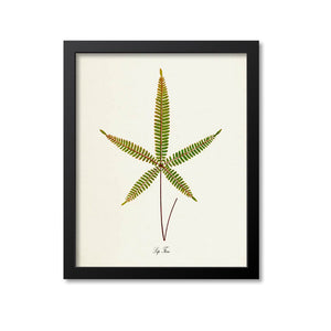 Lip Fern Art Print