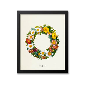 Rose Garland Flower Art Print