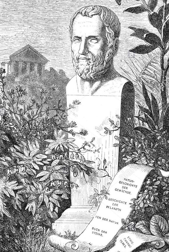 The Father of Botany