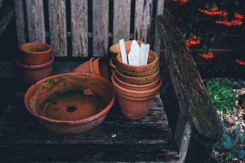 how to prepare the garden for spring planting