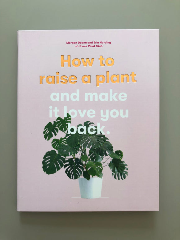 How to Raise a Plant, and make it LOVE you back.