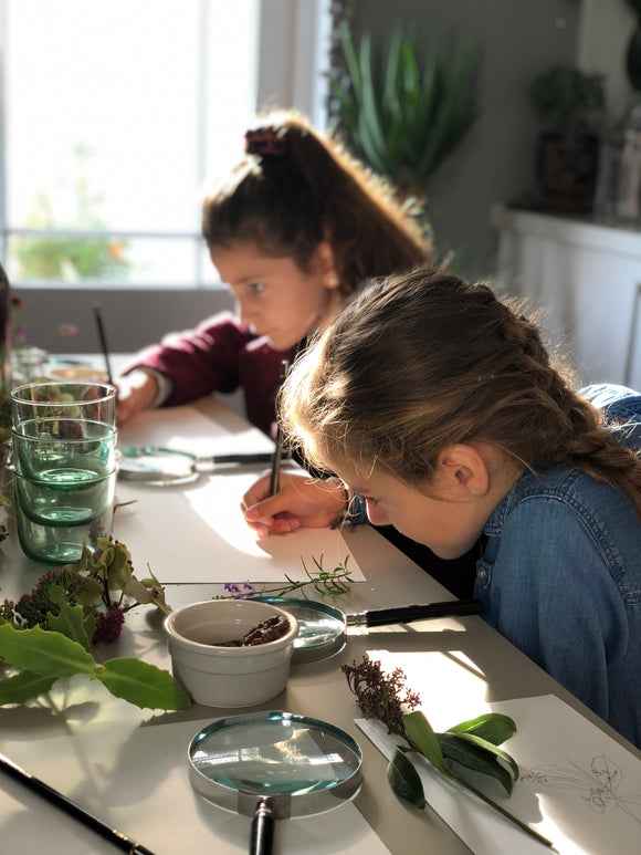 Children's Botanical Illustration Workshop. April 8th