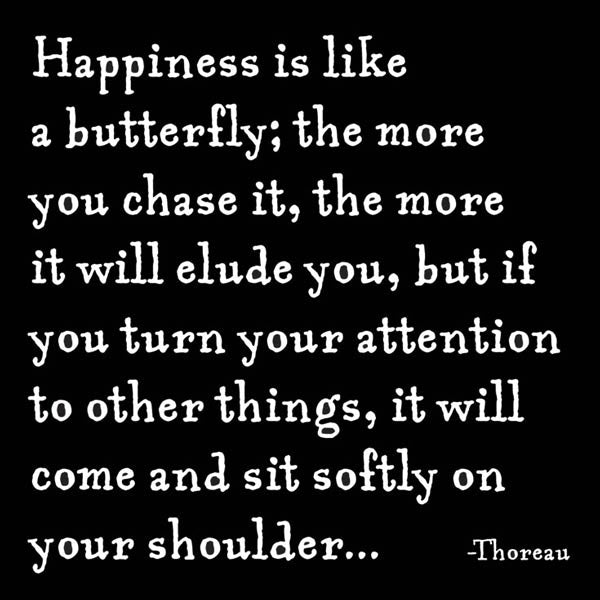 Happiness is like a Butterfly Quotable Card or Magnet
