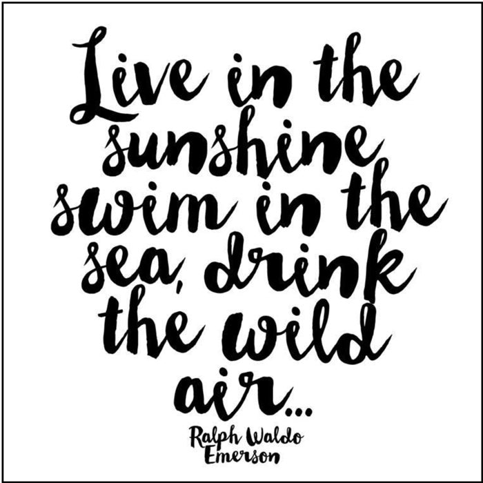 Live In The Sunshine Quotable Card or Magnet