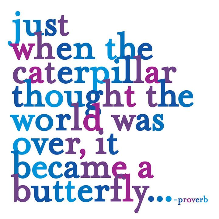 Just When The Caterpillar Quotable Card or Magnet