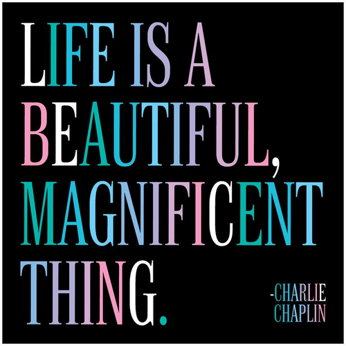 Life is a Beautiful Quotable Card or Magnet