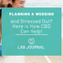 Planning a Wedding and Stressed Out? Here is How CBD Can Help!