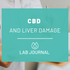 CBD and Liver Damage