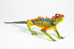 Lizard: large; orange, yellow, green, blue