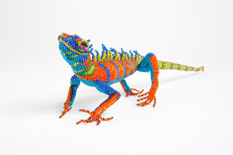 Lizard: large; orange, blue, yellow, green