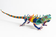Lizard: large; luster rainbow colors
