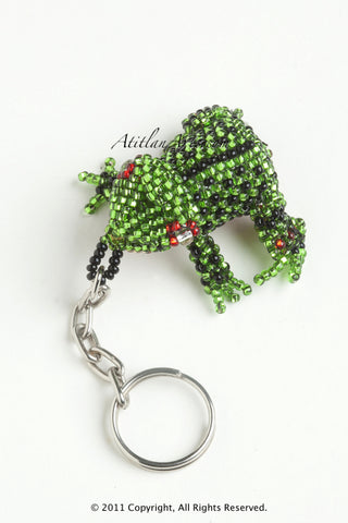 Garden Frog green with black spots, red eye ring [Frogs]