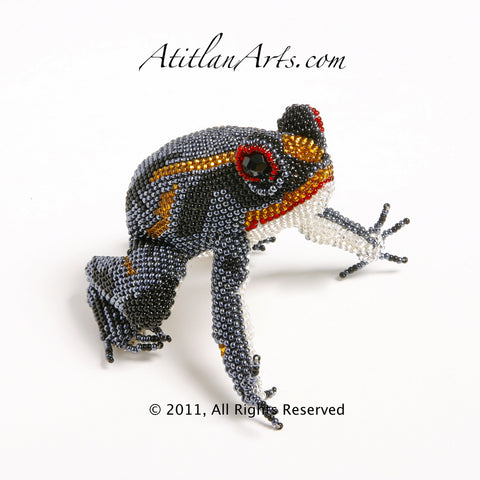 Gray, Black & Orange Frog Striped 03 [Frogs]