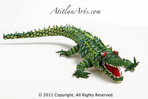 Green Alligator, Medium