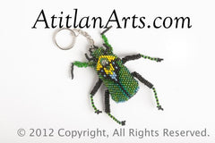 Beetle, large green; black [Insects]