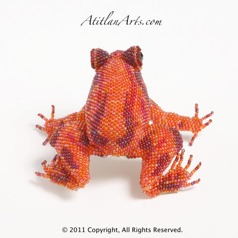 Orange & Red Frog Striped 08 [Frogs]