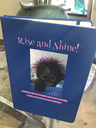 A IWR 'Rise and Shine' lined A5 notebook