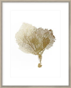 Gold Foil Sea Fan IV