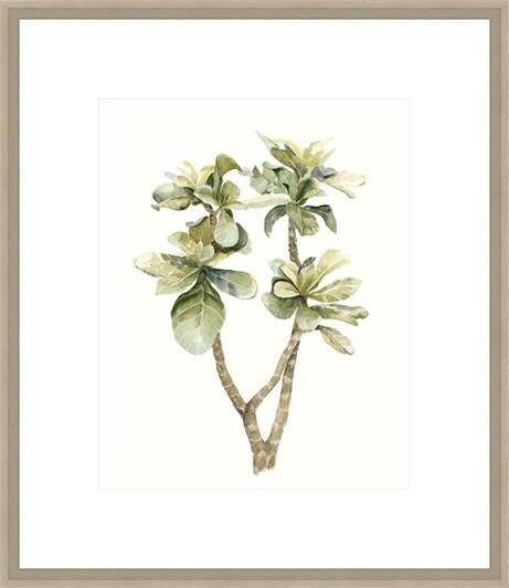 Tropical Watercolour Leaves Iii