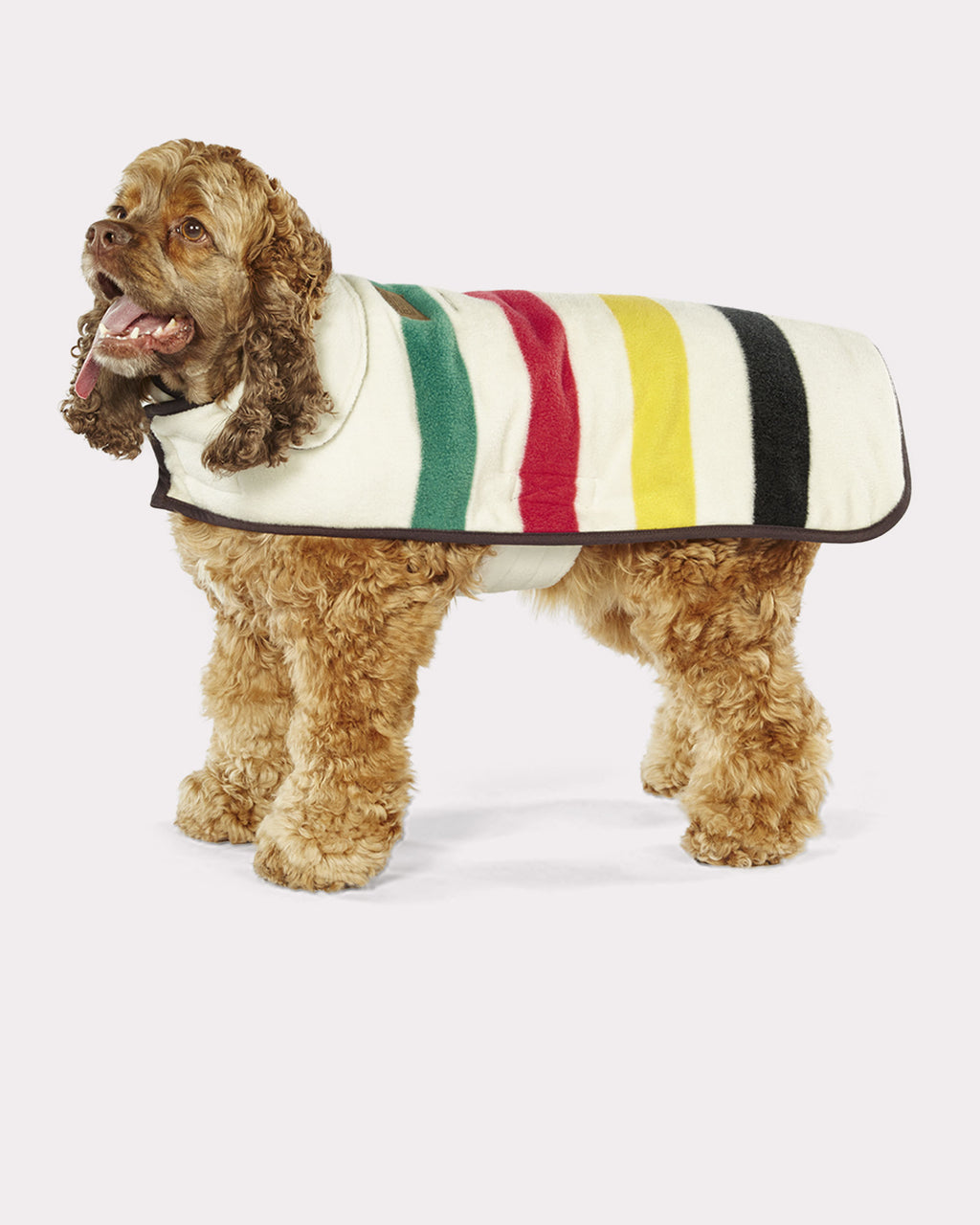Pendleton Glacier Reversible Dog Coat