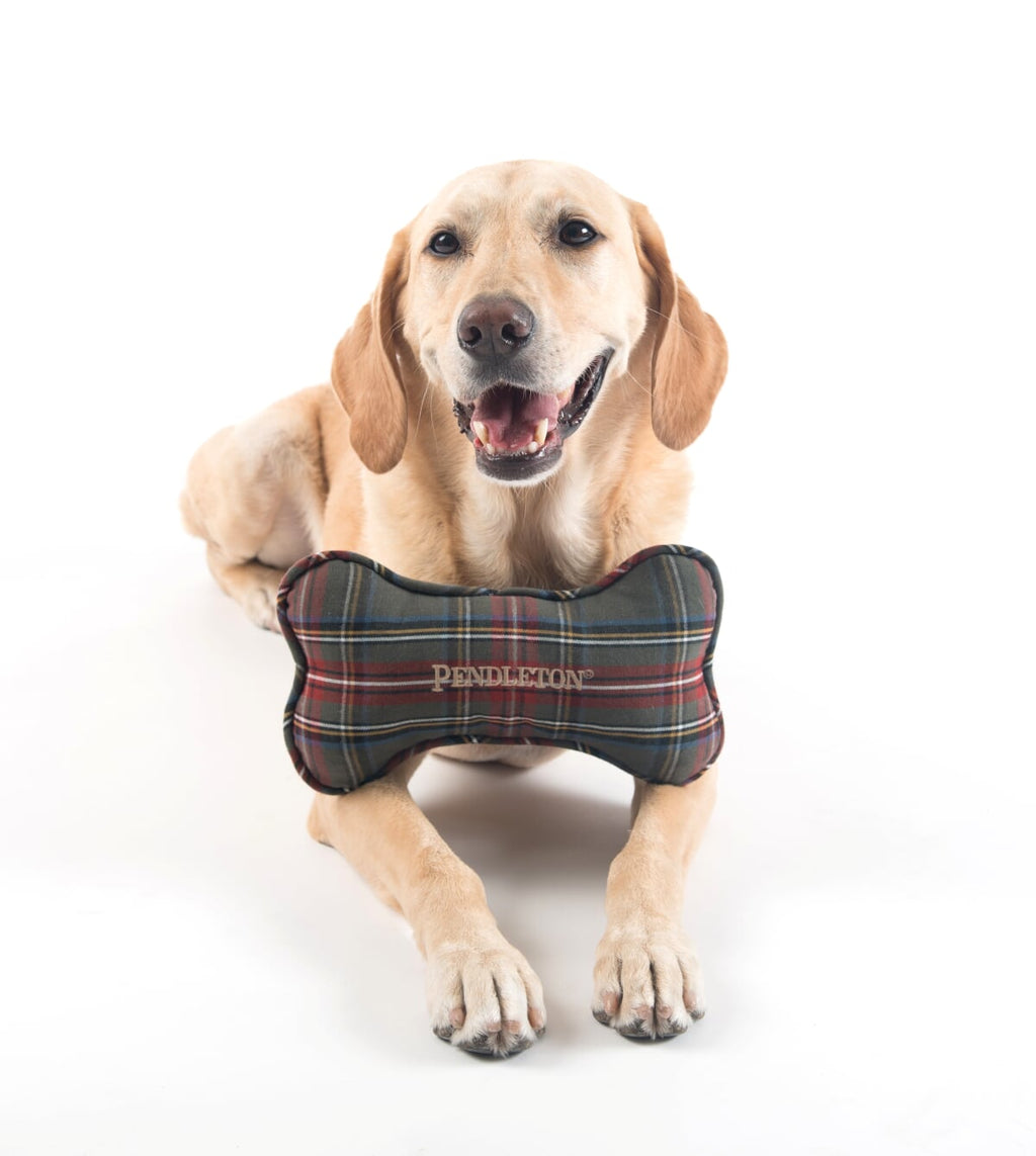 Stewart Plaid Bone Pet Toy